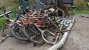 Cykler, skraldespande og en lygtepæl – se dykkerklubbens fangst i Susåen til affaldsindsamling